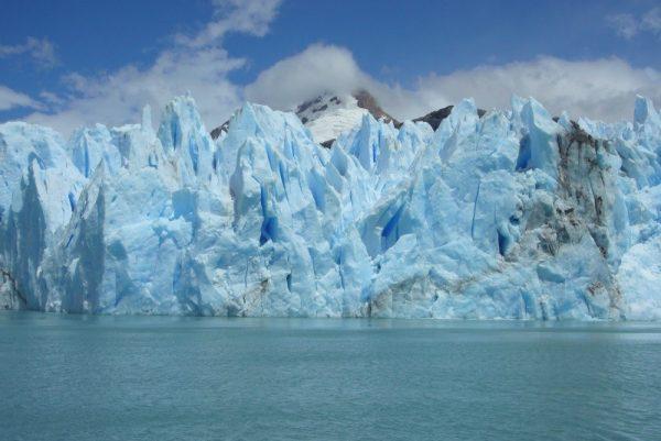 Retroceso de glaciares golpea a la fauna en Península Antártica por cambio climático