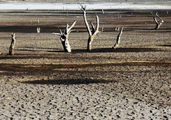 COP22: Reflexionan sobre sequía en evento paralelo