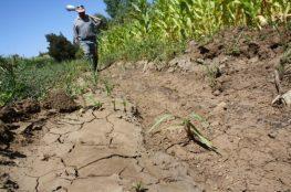 En marcha Agencia de Sustentabilidad y Cambio Climático en el Maule