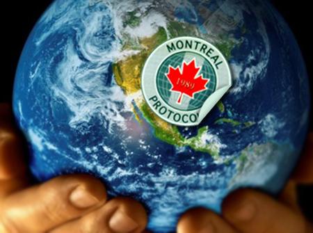 Terram entrega carta a ministro Badenier solicitando su participación reunión internacional sobre Protocolo de Montreal