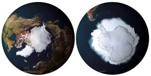 Algunas curiosas diferencias entre el Ártico y la Antártida