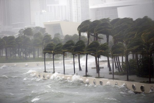 Calentamiento global vuelve a preocupar tras el catastrófico paso de Irma