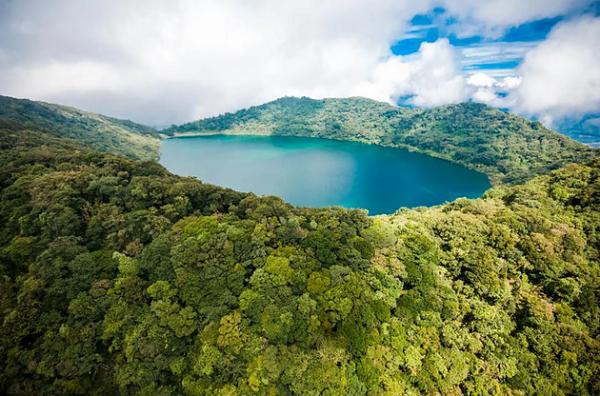 CONAF en alianza a REDD+ estrena manual de estudios jurídicos asociado a cambio climático