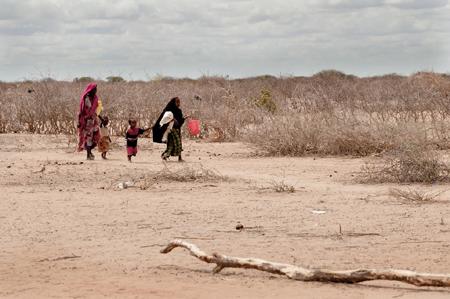 Banco Mundial: Las sequías impiden que 81 millones de personas en el mundo se alimenten