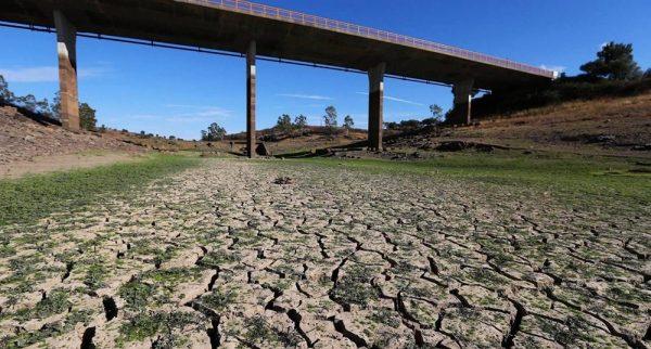 Portugal: tras oleada de incendios, la sequía amenaza