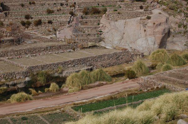 En siglos pasados: Los agricultores del altiplano ya generaban resiliencia al cambio climático