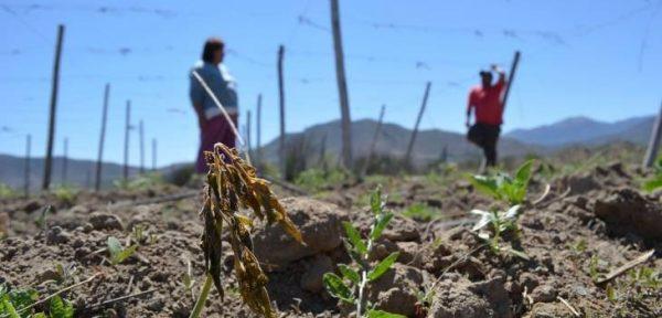 14 comunas de Valparaíso son declaradas como zona de catástrofe por sequía