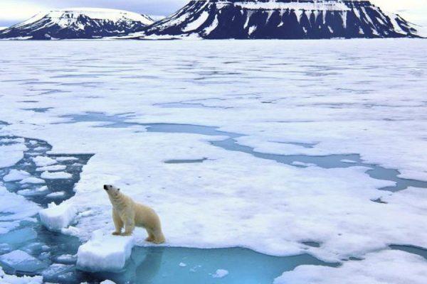 La temperatura del Pacífico repercute en el rápido calentamiento del Ártico