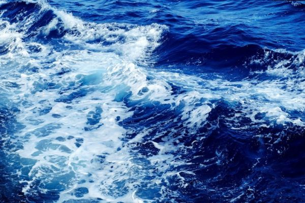 La FAO advierte impacto del cambio climático en la corriente de Humboldt