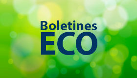 Boletín ECO 7 de Noviembre de 2016